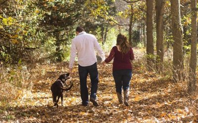 Effects on You, Your Family and Your Pets